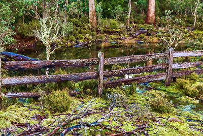 Thumbnail image ofSplit log fence and small tarn, evening low light...