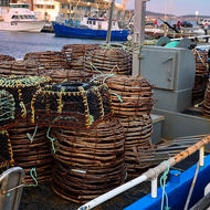 Fishing boats with lobster traps in Constitution Dock.