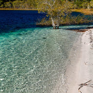 Clear, fresh water and white sands of Lake McKenzie.