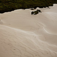 Relentless waves of sand move over Fraser Island.