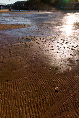 Thumbnail image of Morning sun floods across the ripples in the sand...