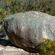 Large egg shaped granite boulder with interesting weathering striations.
