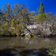 Dr Roberts Waterhole on Bald Rock Creek.