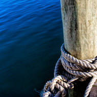 Tied up: Noosa River.