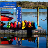 Lined up for a day's fun on Noosa River.