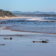 Early morning walks on Nambucca beach.