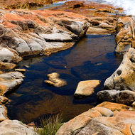 High tidal pool at the point at South West Rocks.