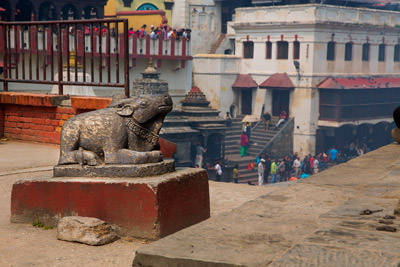 Thumbnail image ofBull image in the Pashupati temple grounds, the...