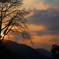 Sunset behind the mountains silhouettes a tree.