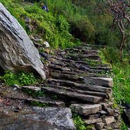 This section of the Annapurna trail has over 2000 steps, all up.
