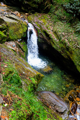Thumbnail image of Inviting cascade in a mountain stream, but cold!