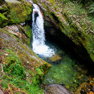 Inviting cascade in a mountain stream, but cold!