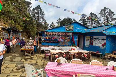 Thumbnail image ofGreenview Lodge, food and trinkets available.