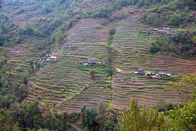 Thumbnail image ofAnother terrace farmed valley, and the trekking...