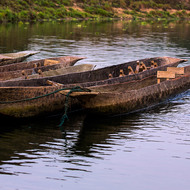 Log canoes at dawn, ready for river outings.