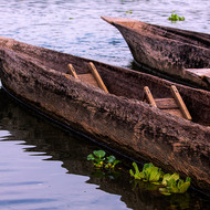 Log canoes and lilies, care not to dangle hands in the water as there are crocodiles.