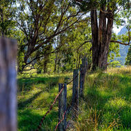 Farm fence along Condamine River Road, Cambanoora Gorge in the distance.