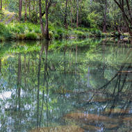 Tranquil pool in the Condamine River.
