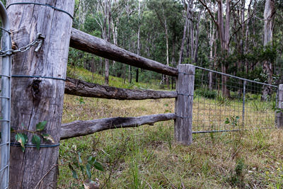Thumbnail image ofFarm fence and gate along the Condamine River...