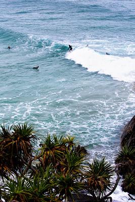 Thumbnail image ofSurfers at Cabarita beach.