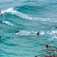 Surfers at Cabarita beach.
