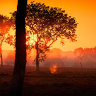 Sunrise over Arnhem Land through a low ground mist.
