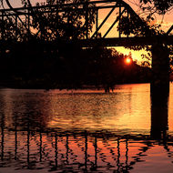 Rail bridge over the Bellinger River and trees silhouetted at sunset.