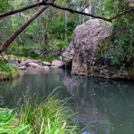 Swimming hole, with swing rope, Upper Logan River.
