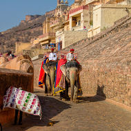 Elephants on the trail to the Amber Fort while a vendor offers fabric.