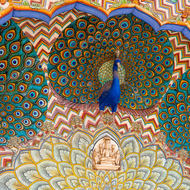 Colorful peacock fresco.