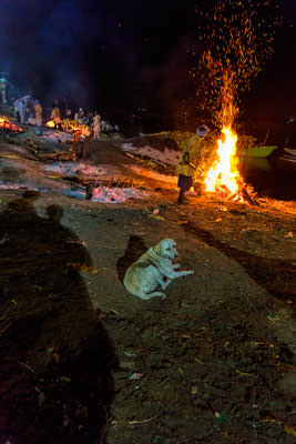 Thumbnail image ofStoking a cremation pyre along the River Ganges.