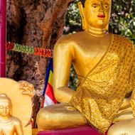 Buddha image in the gardens at Thai national temple at Sarnath.