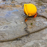 Float and rope in the low tide mud.