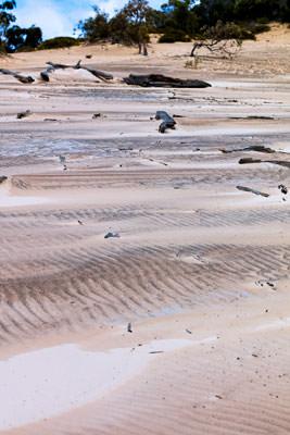Thumbnail image ofSandblow ripples.