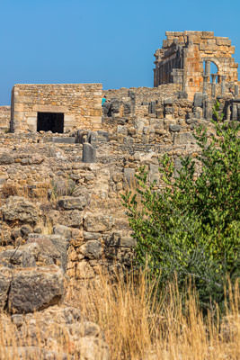 Thumbnail image ofRemains of the Basilica in the centre of Volubilis.