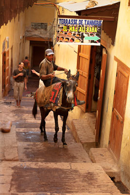 Thumbnail image ofSlow ascent in the streets of the medina
