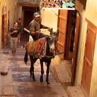 Slow ascent in the streets of the medina