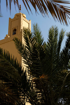 Thumbnail image ofDate palms within the garden of a mosque.