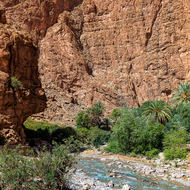 Dades River at the mouth of the Todgha canyon.