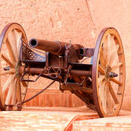 Cannon, in natural sepia.