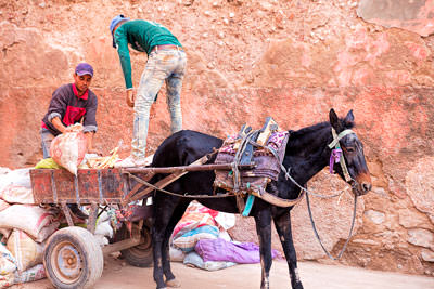 Thumbnail image ofTransport of goods within the narrow souks of...