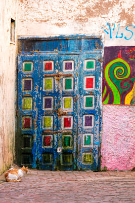 Thumbnail image of Colorful door, street art and alley cat.