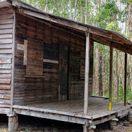 Harry's Hut, old loggers camp.