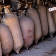 Amphora retrieved from the ruins and lined-up.