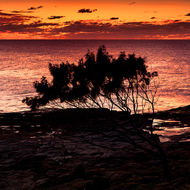 Sunrise at Angourie headland.