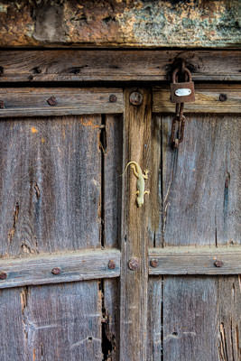 Thumbnail image ofOld door, locked, but not impenetrable to geckos.