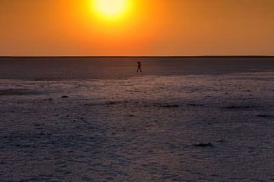 Thumbnail image ofSilhouetted salt walker.