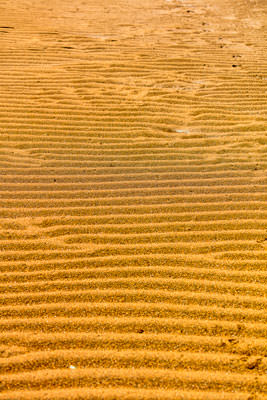 Thumbnail image ofSand ripple.