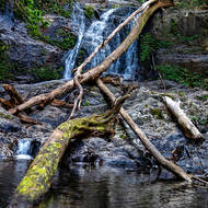 Casuarina Falls on Sassafras Creek.